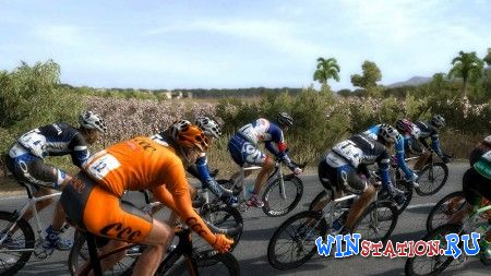 Скачать Pro Cycling Manager Tour De France (Focus Studio) бесплатно
