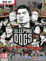 Sleeping Dogs Limited Edition