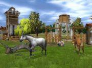 Компьютерная игра Wildlife Park 2 Horses