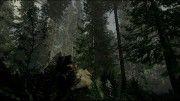 Лес геймплей