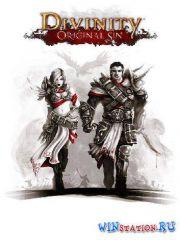 Divinity: Original Sin - Digital Collectors Edition