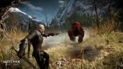 Миссия в игре The Witcher 3 Wild Hunt