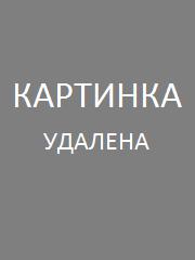 Samorost 3 (2016/PC/RUS/ENG/Repack)