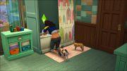 Дополнение Sims 4 Кошки и собаки