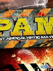 Post Apocalyptic Mayhem (2011/RUS/RePack/PC)