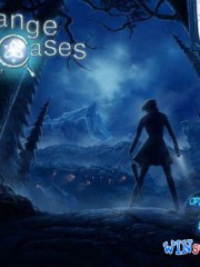 Strange Cases 3: The Secrets of Grey Mist Lake (Mini Games)