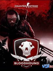 Counter-Strike: Global Offensive v1.35.0.4